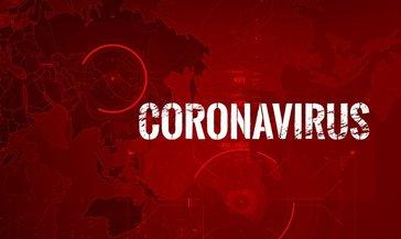 Canlı Corona Virüs Haritası ! Türkiye Ve