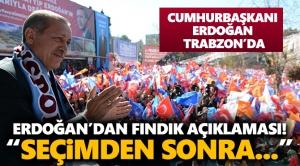Cumhurbaşkanı Erdoğan'dan Fındık Açıklaması! Seçimden Sonra.